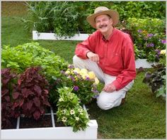 Beginners guide to square foot gardening
