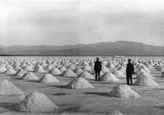 Piles of harvested salt in Saline Valley, CA. 1912 or 1913.