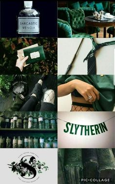 slytherin wand WandYou can find Slytherin and more on our website Casas Do Harry Potter, Estilo Harry Potter, Slytherin Harry Potter, Slytherin House, Slytherin Pride, Harry Potter Houses, Hogwarts Houses, Harry Potter World, Pottermore Slytherin