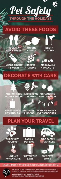 Pet Safety Through the Holidays Infographic | Keep Your Pets Safe This Holiday Season!