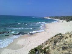 Duna de playa de Bolonia