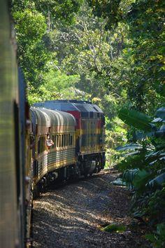 Panama Canal Railway http://fc-foto.de/20190932
