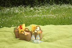 picnicbasket9