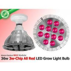 Check out our hottest deals ! 36 Watt Advanced Spectrum MAX ALL RED 3w-Chip LED Grow Bulb