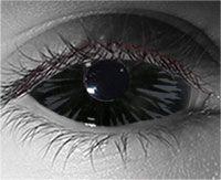 Black Sclera lens - $139.99 - Available in prescription