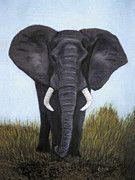 Africa - Elephant by Karen Zuk Rosenblatt