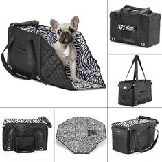 Sherpa Park Tote Pet Carrier Black Quilted Stylish Bag Purse Small Dogs & Cats in Pet Supplies, Dog Supplies, Carriers & Totes | eBay