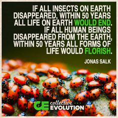 Jonas Salk quote. Translation - other life, particularly insects and plants are beneficial and vital to earth - we aren't!