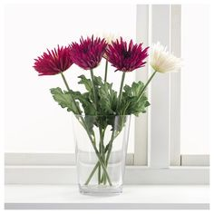 SMYCKA yapay çiçek krizantem-beyaz 55 cm | IKEA Ev Dekorasyonu