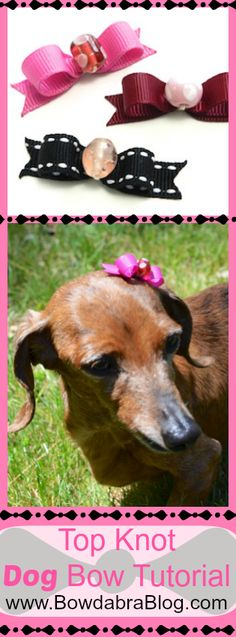 Top Knot Dog Bow Tutorial