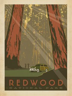 Redwood National Park - Anderson Design Group has created an award-winning series of classic travel posters that celebrates the history and charm of America's greatest cities and national parks. Founder Joel Anderson directs a team of talented Nashville-based artists to keep the collection growing. This print celebrates the gentle giants of Redwood National Park.