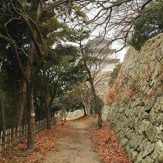 #замок #акаси #фотографам #назаметку #фототочка #япония #пейзажнаяфотосъёмка #фототур #фототуры #туроператор www.midokoro.com