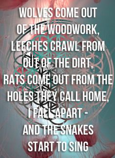 this is so wrong ugh WORMS come out of the woodwork leeches crawl out of the DARK rats come out of the holes they call home, i fall apart, and the snakes start to sing. Band Quotes, Music Quotes, Good Music, My Music, Matt Kean, The Wombats, I Fall Apart, Bmth, Tv Show Quotes