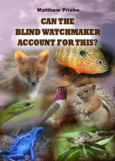 Can the Blind Watchmaker Account for This? Learn More on CFDb. http://www.christianfilmdatabase.com/review/can-blind-watchmaker-account/