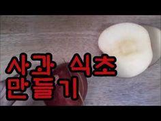 💕사과 식초 만들기To make cider vinegar - YouTube Convenience Store, Youtube, Convinience Store