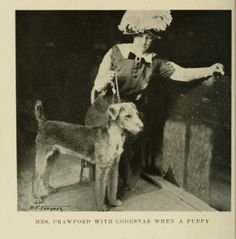 Mrs Crawford c. 1913 with Airedale Terrier Lodestar when a puppy. Download this book.