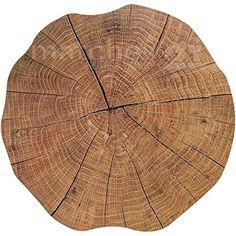 Tischset Platzset MOTIV Baumstamm Baum Scheibe Holzoptik braun 6 Stk. rund Ø 38 cm Kunststoff Platzmatte undurchlässig abwaschbar abwischbar