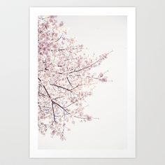 Cherry Blossom Greeting Card by Neon Wildlife - Set of 10 Folded Cards x Cherry Blossom Art, Canvas Prints, Art Prints, Folded Cards, Buy Frames, Wildlife, Gallery Wall, Just For You, Neon