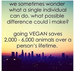 This is a big difference; Although this doesn't even mention all the positive environmental differences that going vegan can mean for the planet (saves water, cuts down on green house gas emissions, etc.) – More at http://www.GlobeTransformer.org
