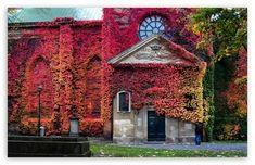 Klara Church, Stockholm HD desktop wallpaper : Widescreen : High Definition : Fullscreen : Mobile