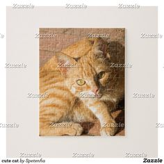 cute cat jigsaw puzzle Make Your Own Puzzle, Custom Gift Boxes, Kittens Cutest, High Quality Images, Jigsaw Puzzles, Kitty, Cats, Prints, Pictures
