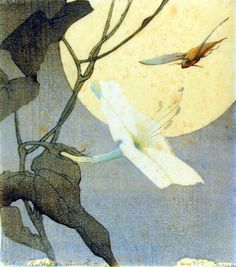 """A.R.H.Smith, Moon, Flower, and Hawk Moth 1917-18. Alice Ravenel Huger Smith, a """"Charleston Renaissance"""" artist who made Japanese-influenced prints in the early 20th century along her adventure in becoming an artist."""