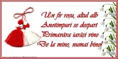 Trimite si tu acum o felicitare de 1 martie, o fel 8 Martie, Holiday Parties, Holiday Decor, Book Flowers, Class Decoration, Wedding Flowers, Christmas Ornaments, Messages, Birthday