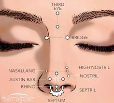Encyclopedia of Body Piercings: Standard Nostril Nose Piercing A guide. - Encyclopedia of Body Piercings: Standard Nostril Nose Piercing A guide to the different t - Bijoux Piercing Septum, Innenohr Piercing, Spiderbite Piercings, Types Of Ear Piercings, Smiley Piercing, Tattoo Und Piercing, Facial Piercings, Different Types Of Piercings, Nose Piercing Placement