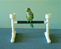 Tabletop Parrot Bird Perch Stand Play Gym With Water And Food Bowls Parrot Perch, Parrot Bird, Bird Perch, Parrot Stand, Bird Stand, Cockatiel, Budgies, Parrots, Bird Play Gym