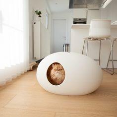 Moderne Katzentoilette - die Alternative zu herkömmlichen Katzenklos