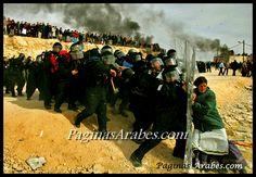 El largo camino hacia la reivindicación de la mujer palestina - (+ Video)