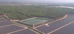 WWF revela que más de 1.700 balsas de riego acaparan el agua de Doñana y la mayoría son ilegales