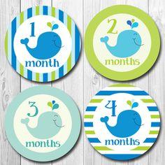 Monthly Baby Sticker Baby Monthly Sticker Preppy by ChevronSmiles