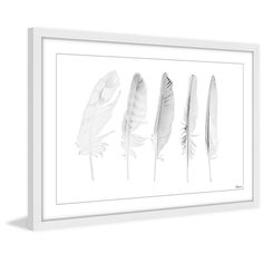 New 'Five White Feathers II' Framed Graphic Art Print by Bungalow Rose Wall Art Decor. offers on top store Painting Frames, Painting Prints, Art Print, Framed Wall Art, Wall Art Decor, Room Decor, 16 X 24 Frame, All White Background, Feather Art