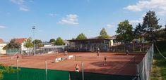 Playoff Landesliga , Am Samstag, 08.09.2018 fand das PlayOff der Damen-Kreismeister für den Aufstieg in die Landesliga statt. Unsere Damen reisten inkl. großer Fanbeglei... Tennis, Basketball Court, Women's