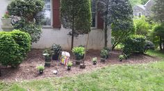 Have youbuyweplant.com design your garden for you! 610-500-1210  Serving the Main Line and Philadelphia suburbs