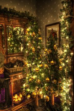 Decoration:Wonderful Christmas Tree Decorating Ideas With Christmas Tree Lighting Decor Also Wooden Cabinets Christmas Decorating Themes The Ultimate Alluring Christmas Decorating Ideas for Your Cheerful Christmas