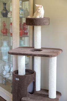 Buy Cat Furniture Lotus Tree Tower Condo Wood Modern Scratch Pad Play Jump Sleep Nap at online store Modern Cat Furniture, Pet Furniture, Cat Tree Condo, Cat Condo, Cat Activity Centre, Cat Tree Designs, Cat Trees, Scratching Post, Buy A Cat