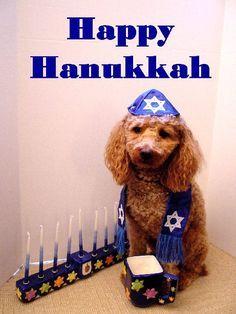Happy Hanukkah on Pinterest | Menorah, Hanukkah Menorah and Hannukah