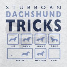 Laughed so hard when I saw this t-shirt... Dachshund owners know how true it is!