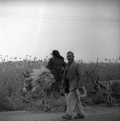 """central greece may 1959 peasants originally labeled """"to delphi"""", set includes… Greece Photography, Photographs Of People, Great Photographers, Donkeys, Photo Archive, Athens, Europe, Mountains, Black And White"""
