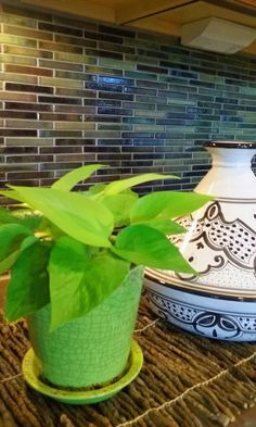 Indoor Office Plants, Indoor Tropical Plants, Neon Pothos, Pothos Plant  Care, Interior Plants, Interior Design, Plant Decor, Lower Lights, ...