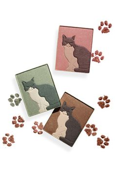 Shadow, liner and blush for Kitty lovers
