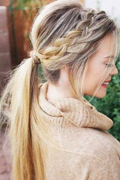 Lovely Braided Ponytail picture 1