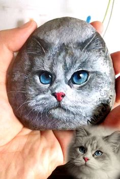 cat art/portrait on rocks/stone♥♥