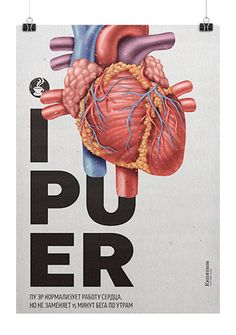 Дизайн плакатов - П4
