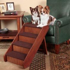 Pet stairs~ I need for CoCo, if he would just use them.