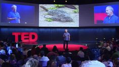 """TED Talk with Mark Plotkin - What the people of the Amazon know that you don't: This TED talk discusses the cultures of isolated Amazonian tribes, and what they have to teach the Western world in terms of environmental sustainability and natural medicinal treatments. Mark Plotkin makes comparisons between his life and the life of the Amazonian tribes. """"Intercultural Communication"""""""
