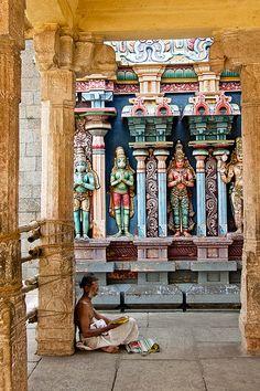 The Scholar. Srirangam Temple, Tamil Nadu, India