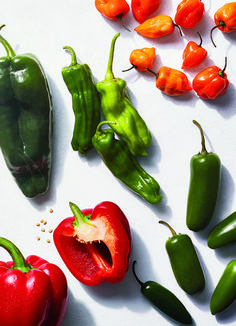Strategies, techniques, and tips on chiles and peppers—from the Real Simple Test Kitchen to yours. Cooking For A Group, New Cooking, Cooking With Kids, Cooking Light, Cooking Tips, Cooking Recipes, Cooking Meme, Cooking Gadgets, How To Cook Asparagus